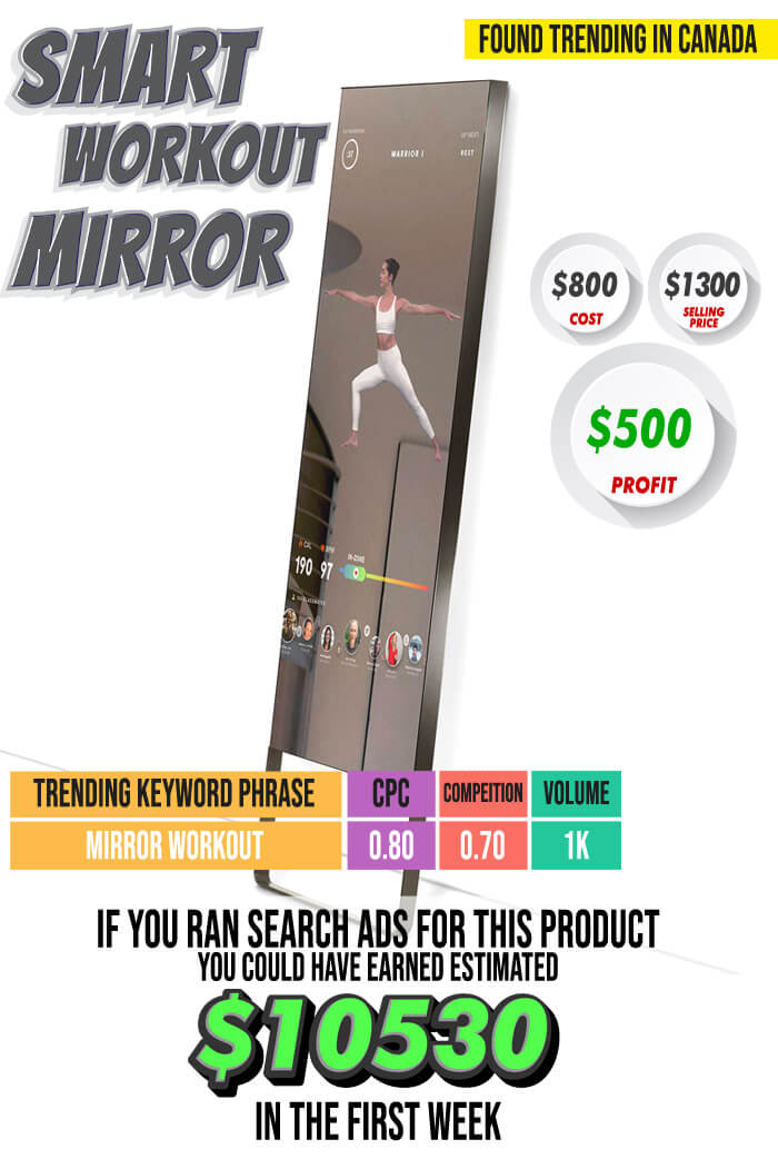 Smart Workout Mirror - Case Study